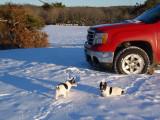 snow 12-6-13 007.jpg