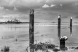 Harbour, Walsoorden