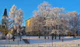 Frosty Trees, Tampere