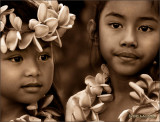 Keiki Hula Sisters