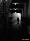 Union Station Underground