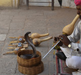 snake charmer sends us on our way