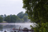 Early morning, minor perches disturbing the quiet lake-surface.