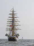 Tall Ship Race Gallery