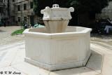 Fountain DSC_6845