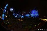 Hong Kong Pulse 3D Light Show DSC_2839