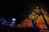 Hong Kong Pulse 3D Light Show DSC_2787