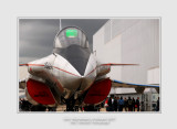Salon Aeronautique du Bourget 2013 - 45