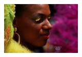 Carnaval Tropical de Paris 2013 - 13