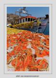 Boats 84 (Egiali)