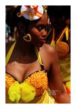 Carnaval Tropical de Paris 2013 - 45