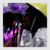 Carnaval Tropical de Paris 2013 - 4