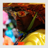 Carnaval Tropical de Paris 2013 - 14