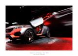Mondial de l'Automobile - Paris 2014 - 22