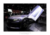 Mondial de l'Automobile - Paris 2014 - 39