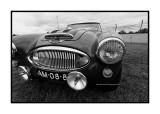 Austin-Healey 3000 mk1, Le Mans