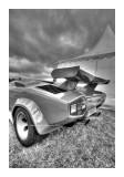 Cars BW HDR 60