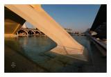 Valencia - Ciudad de las artes y las ciencias 13