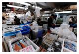 Tsukiji Fish Market - Tokyo 2