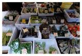 Tsukiji Fish Market - Tokyo 34