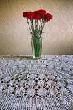 Carnation Still Life 20130513