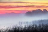 Misty Rideau Canal Sunrise 34722-5
