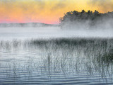 Misty Otter Lake At Sunrise DSCF06622