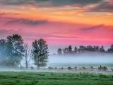 Misty Clouded Sunrise 20130813