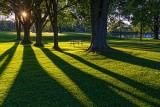 Sunrise Shadows 20130815