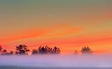Distant Mist At Sunrise DSCF08334-6