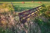 Rusty Field-gate 20130908