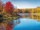 Autumn Shoreline DSCF09769