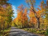 Autumn Back Road DSCF09943-5