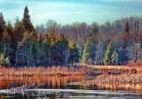 Late Autumn River DSCF11523-5