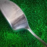 Green Sprinkles Scoop 02048