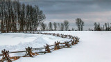Split-rail Snowscape 20140129