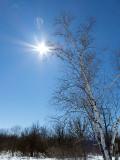 Sun Lens Flare Test P1000205