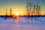 Early Spring Sunrise P1000420-2