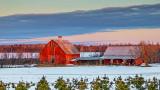 Red Barn At Sunrise 20140403