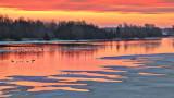 Rideau Canal Sunrise 20140407
