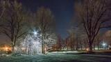 Park At Night P1010844
