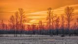 Spring Sunrise 20140417
