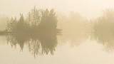 Foggy Rideau Canal P1020331