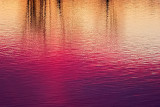 Sunrise Reflection P1020827