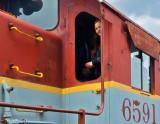 Engine 6591 (P1030258)