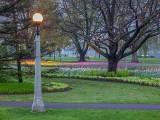 Commissioners Park P1030578
