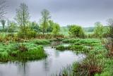 Hutton Creek 20140523