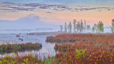 The Swale At Sunrise 20140524