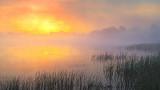 Foggy Sunrise 20140601