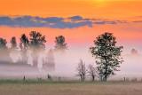 Ground Fog At Sunrise 20140617